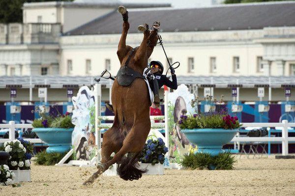 Pauvre cheval avec un abruti d'humain !