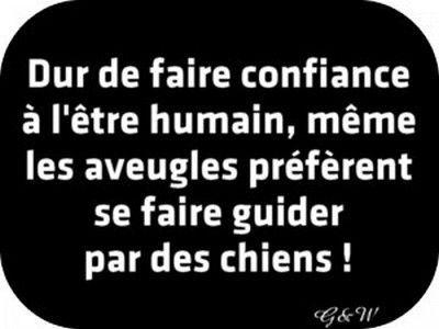 Citation Humour Noir